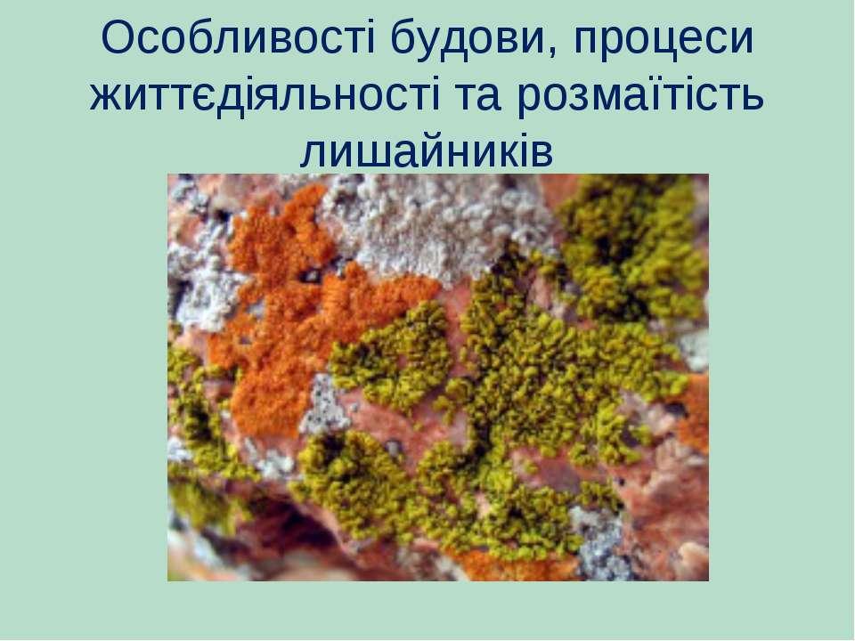 Особливості будови, процеси життєдіяльності тарозмаїтість лишайників