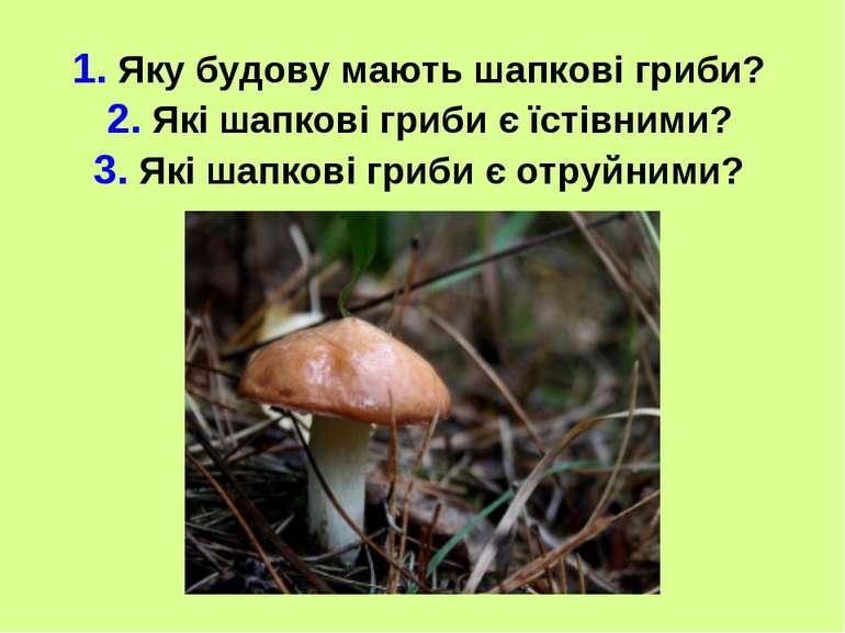 1. Яку будову мають шапкові гриби? 2. Які шапкові гриби є їстівними? 3. Які ш...