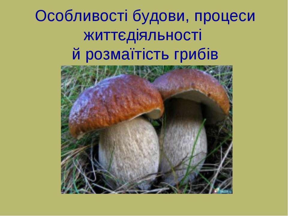 Особливості будови, процеси життєдіяльності й розмаїтість грибів