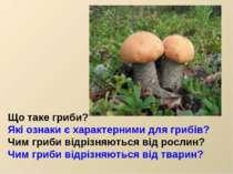 Що таке гриби? Які ознаки є характерними для грибів? Чим гриби відрізняються ...