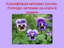 Класифікація квіткових рослин. Розподіл квіткових на класи й родини