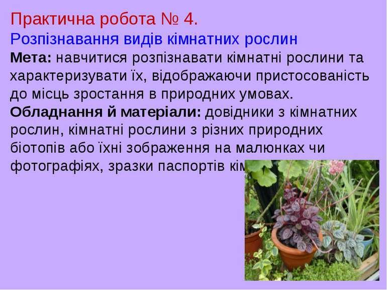 Практична робота № 4. Розпізнавання видів кімнатних рослин Мета: навчитися ро...