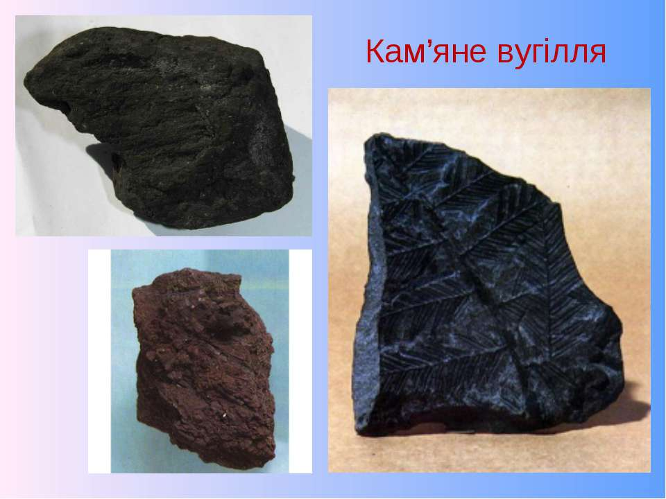 Кам'яне вугілля