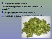 1. На які органи може розчленовуватися вегетативне тіло мохів? 2. Як розмножу...