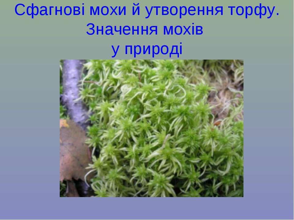 Сфагнові мохи й утворення торфу. Значення мохів у природі
