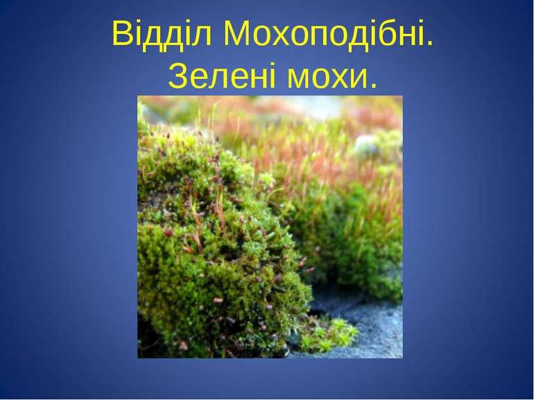 Відділ Мохоподібні. Зелені мохи.