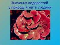 Значення водоростей у природі й житті людини