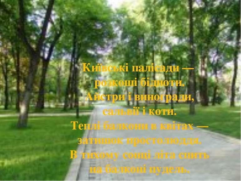 Київські палісади — розкоші бідноти. Айстри і виногради, сальвії і коти. Тепл...