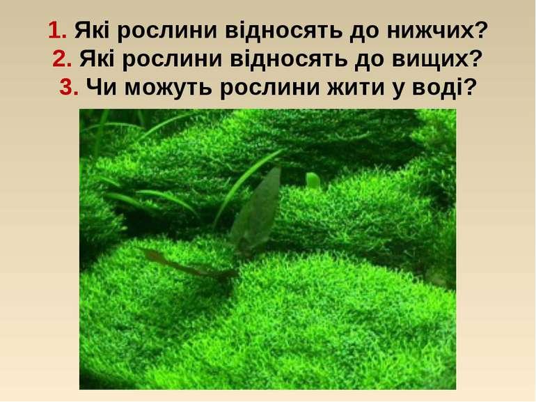 1. Які рослини відносять до нижчих? 2. Які рослини відносять до вищих? 3. Чи ...