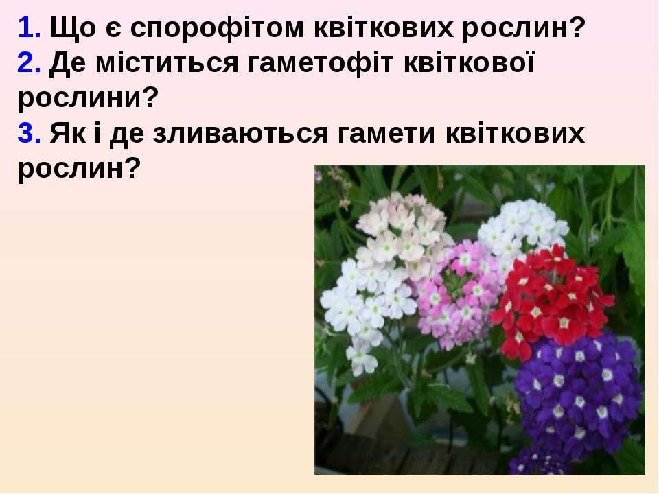 1. Що є спорофітом квіткових рослин? 2. Де міститься гаметофіт квіткової росл...