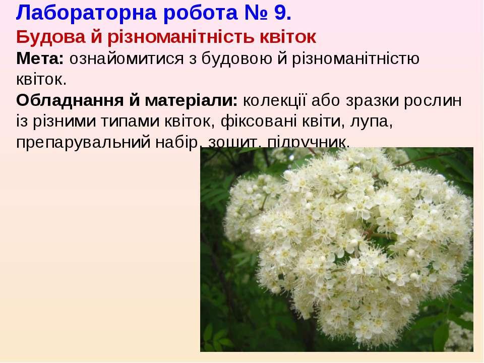 Лабораторна робота № 9. Будова й різноманітність квіток Мета: ознайомитися з ...