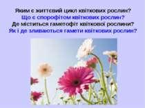 Яким є життєвий цикл квіткових рослин? Що є спорофітом квіткових рослин? Де м...