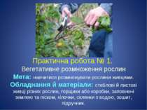 Практична робота № 1. Вегетативне розмноження рослин Мета: навчитися розмножу...
