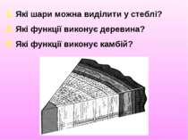 1. Які шари можна виділити у стеблі? 2. Які функції виконує деревина? 3. Які ...