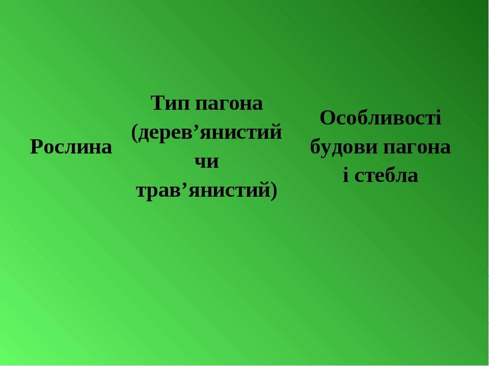 Рослина Тип пагона (дерев'янистий чи трав'янистий) Особливості будови пагона ...