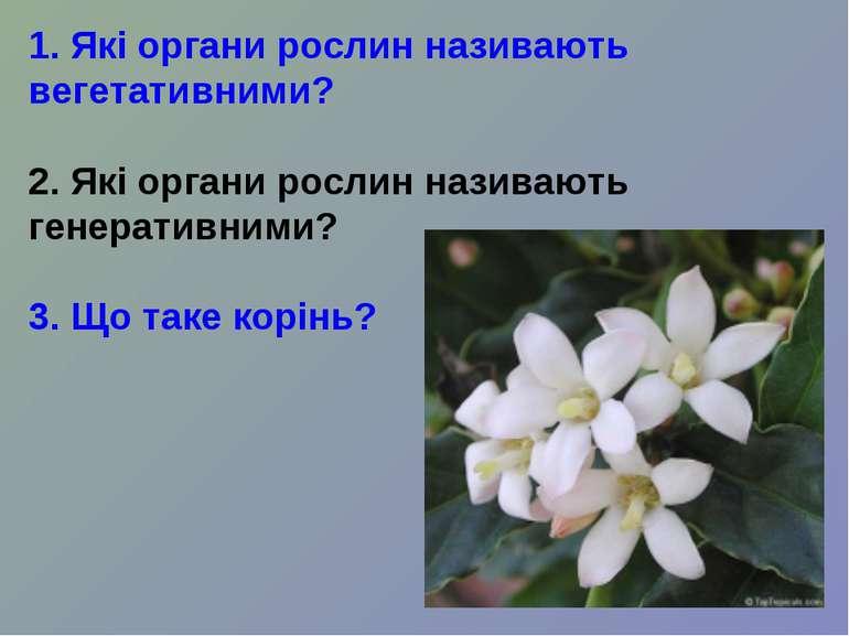 1. Які органи рослин називають вегетативними? 2. Які органи рослин називають ...