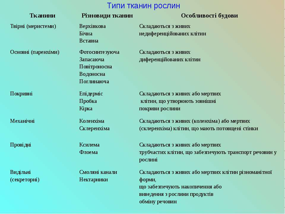 Типи тканин рослин Тканини Різновиди тканин Особливості будови Твірні (мерист...