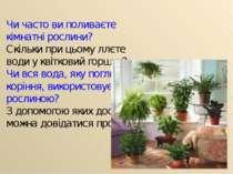 Чи часто ви поливаєте кімнатні рослини? Скільки при цьому ллєте води у квітко...