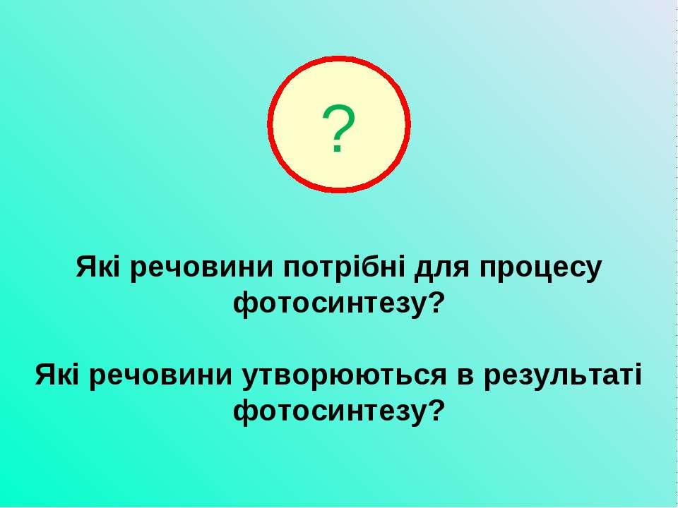 Які речовини потрібні для процесу фотосинтезу? Які речовини утворюються в рез...