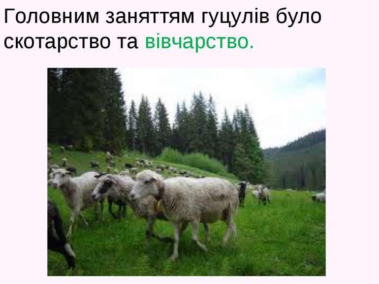 Головним заняттям гуцулів було скотарство та вівчарство.