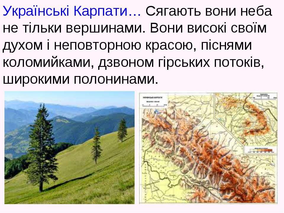 Українські Карпати… Сягають вони неба не тільки вершинами. Вони високі своїм ...