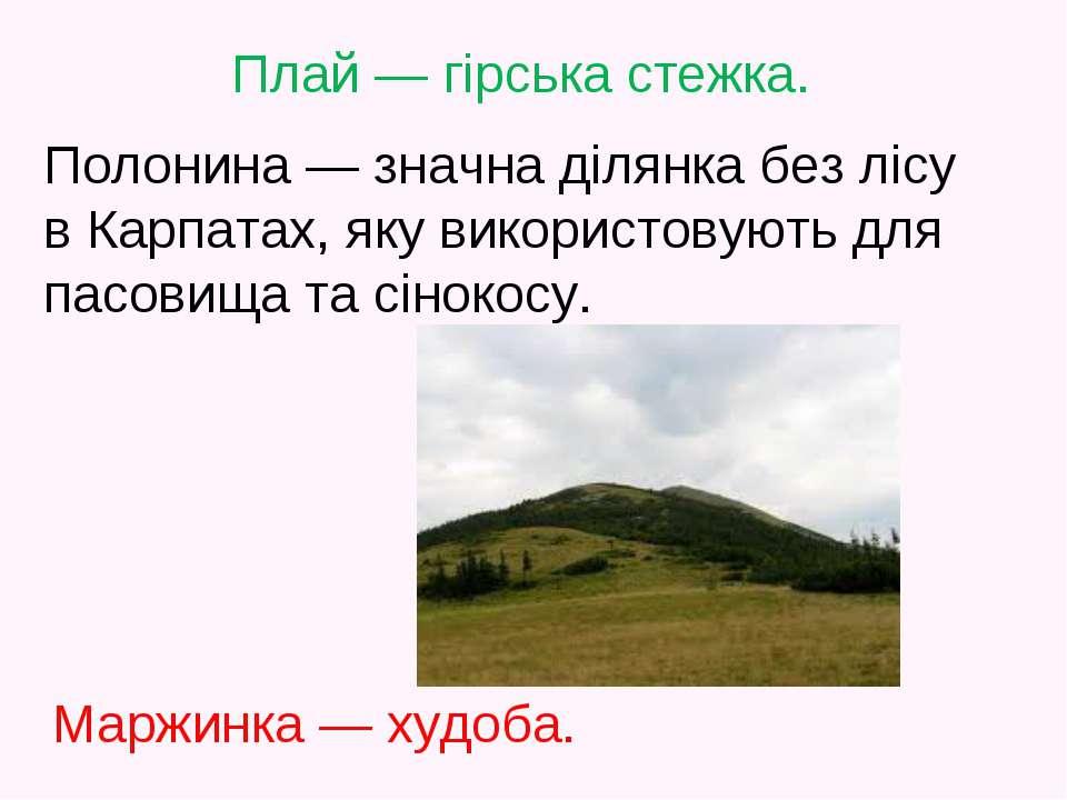 Полонина — значна ділянка без лісу в Карпатах, яку використовують для пасовищ...