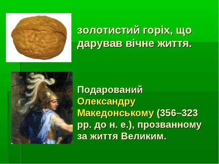 золотистий горіх, що дарував вічне життя. Подарований Олександру Македонськом...