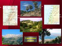 Сардонська долина