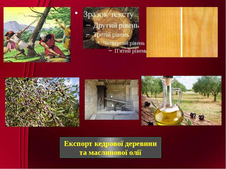 Експорт кедрової деревини та маслинової олії