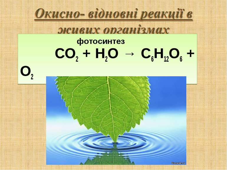фотосинтез СО2 + Н2О → C6H12O6 + O2