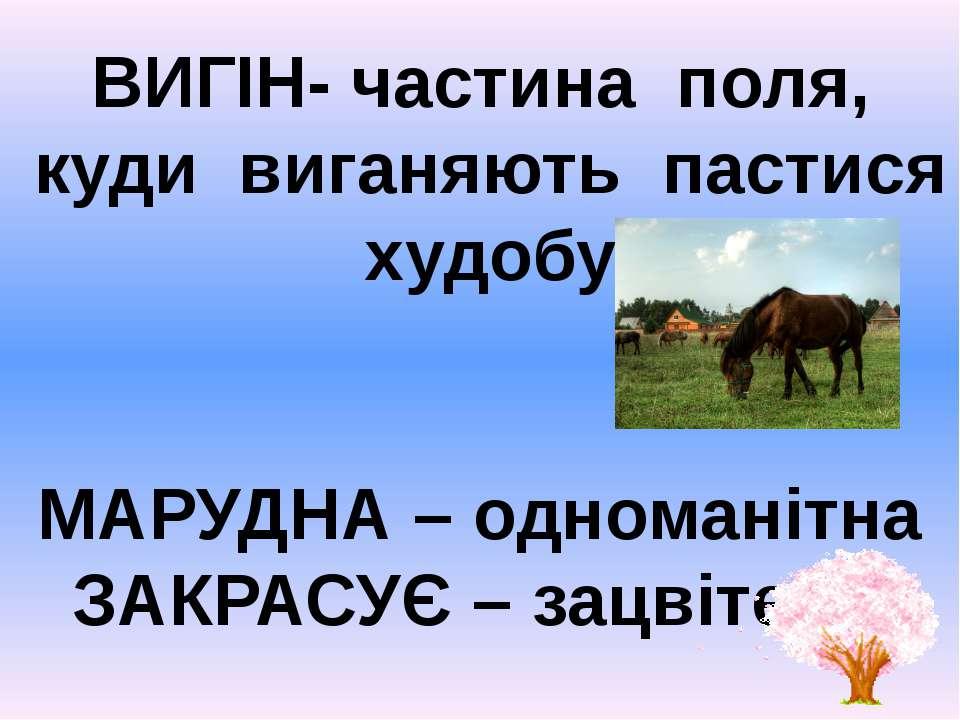 ВИГІН- частина поля, куди виганяють пастися худобу МАРУДНА – одноманітна ЗАКР...