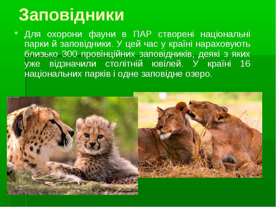 Заповідники Для охорони фауни в ПАР створені національні парки й заповідники....