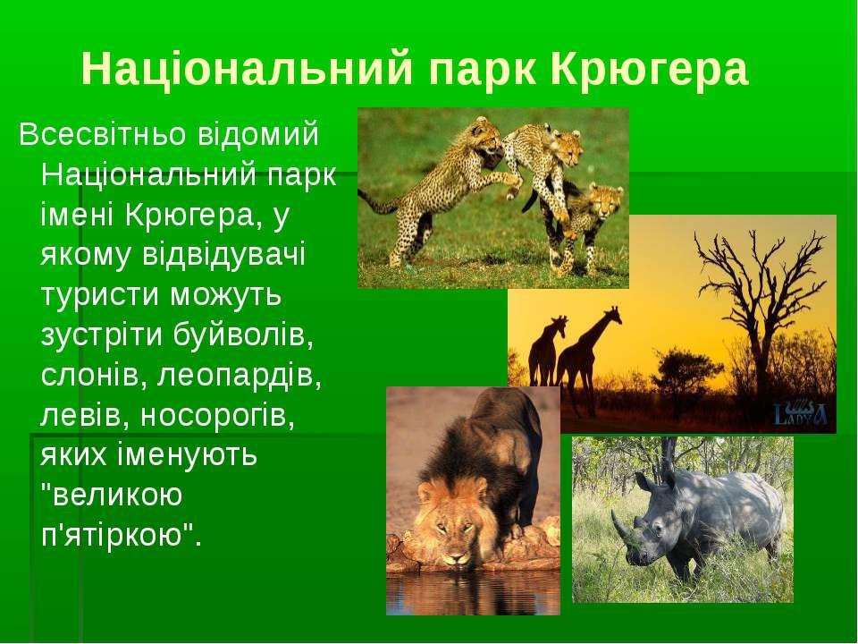 Національний парк Крюгера Всесвітньо відомий Національний парк імені Крюгера,...