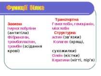 Захисна Імуноглобуліни (антитіла) Фібриноген, тромбопластин, тромбін (зсіданн...