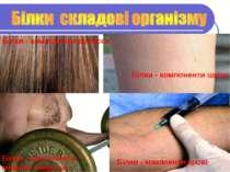 Білки - компоненти волосся Білки - компоненти шкіри Білки - компоненти мязово...