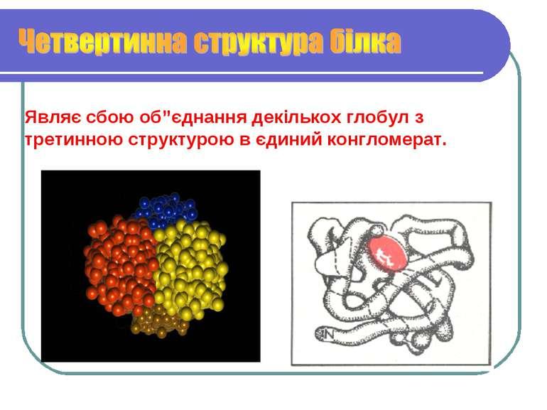 """Являє сбою об""""єднання декількох глобул з третинною структурою в єдиний конгло..."""
