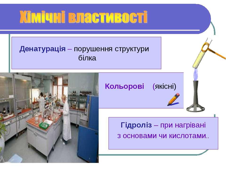 Кольорові (якісні) Денатурація – порушення структури білка Гідроліз – при наг...