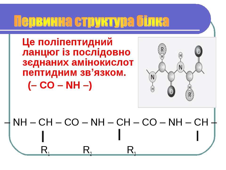 Це поліпептидний ланцюг із послідовно зєднаних амінокислот пептидним зв'язком...