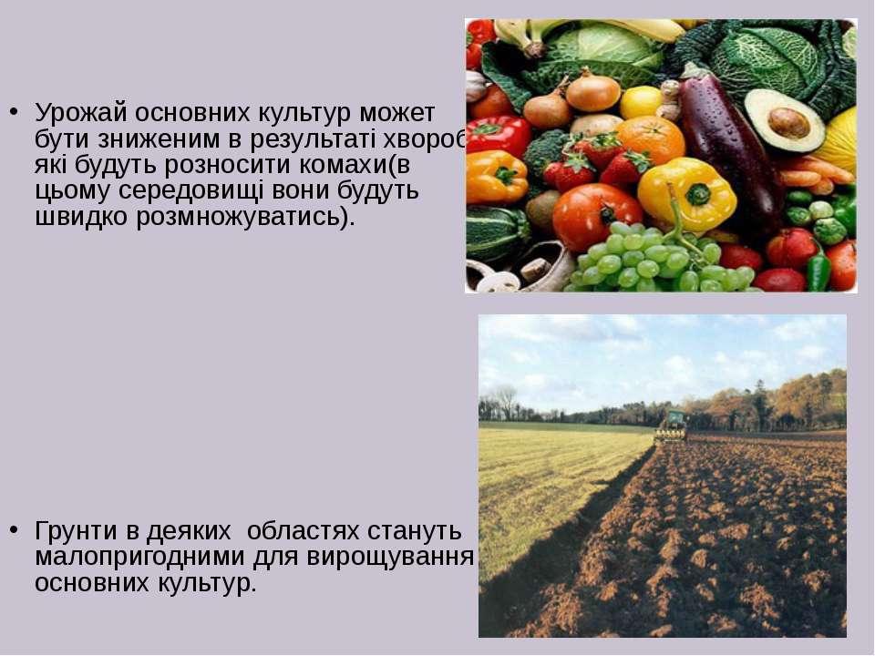 Урожай основних культур может бути зниженим в результаті хвороб, які будуть р...