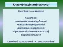 Класифікація амінокислот Циклічні та ациклічні Ациклічні: моноаміномонокарбон...