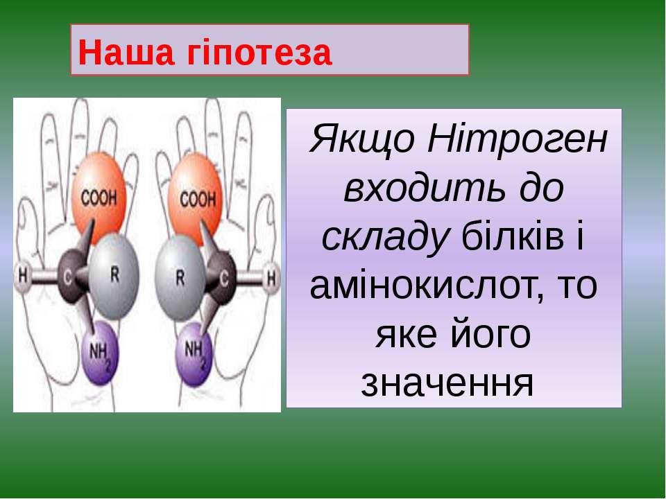 Наша гіпотеза Якщо Нітроген входить до складу білків і амінокислот, то яке йо...