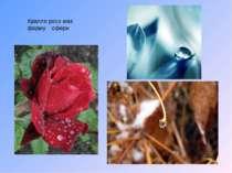 Крапля роси має форму сфери