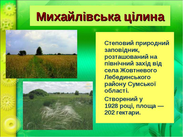 Михайлівська цілина Степовийприроднийзаповідник, розташований на північний з...