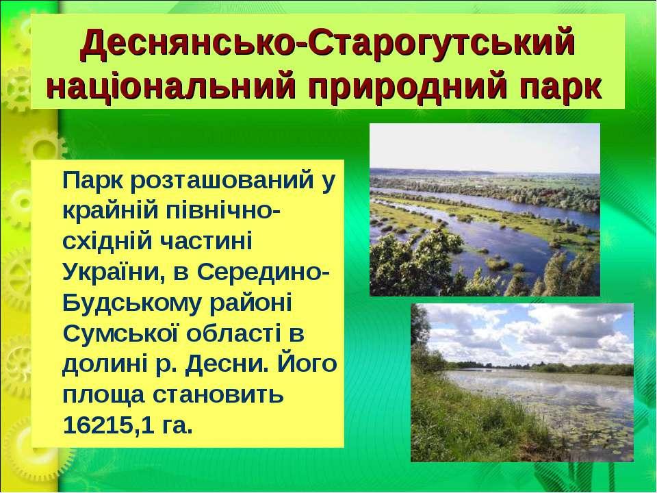 Деснянсько-Старогутський національний природний парк Парк розташований у кра...