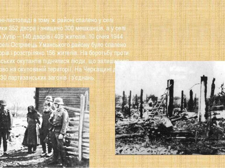 у жовтні-листопаді в тому ж районі спалено у селі Мельники 352 двори і знище...