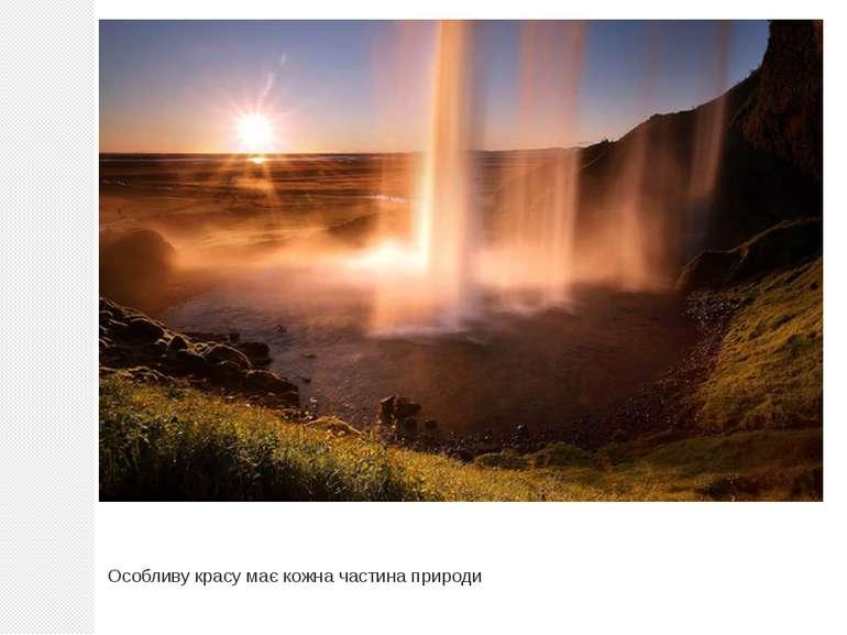Особливу красу має кожна частина природи