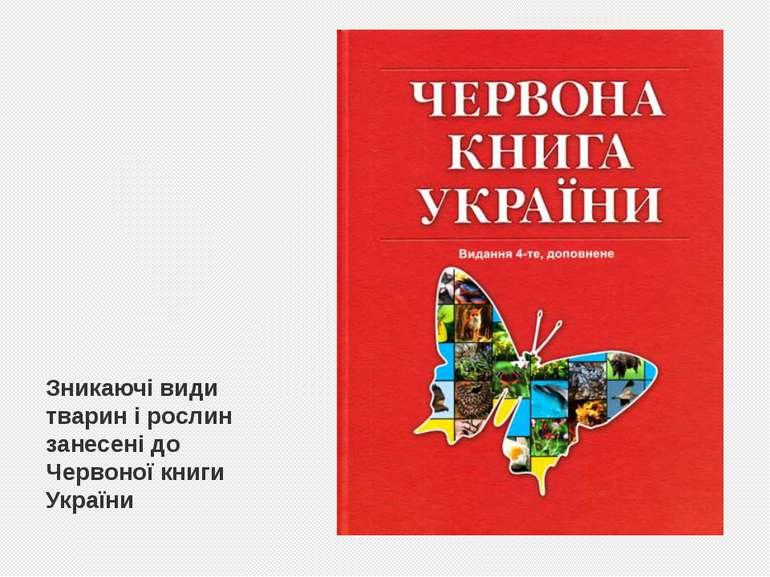 Зникаючі види тварин і рослин занесені до Червоної книги України
