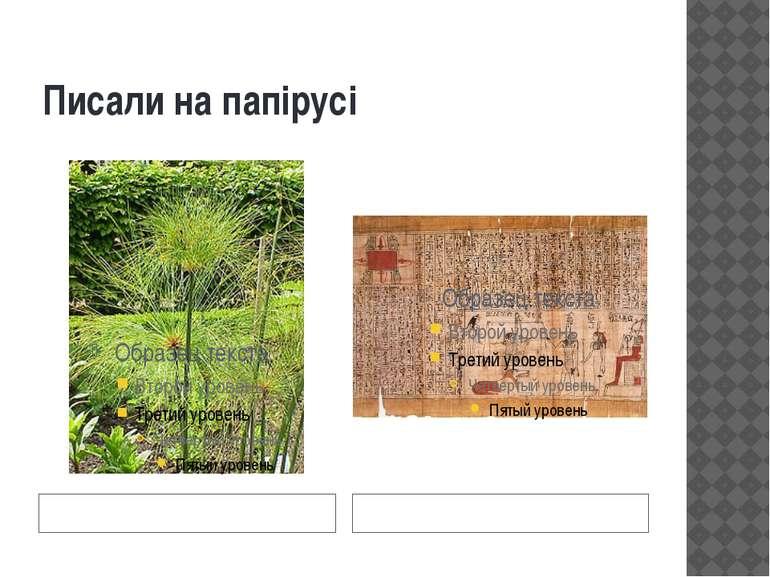 Писали на папірусі рослина сувій