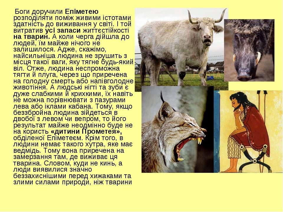Боги доручили Епіметею розподіляти поміж живими істотами здатність до виживан...