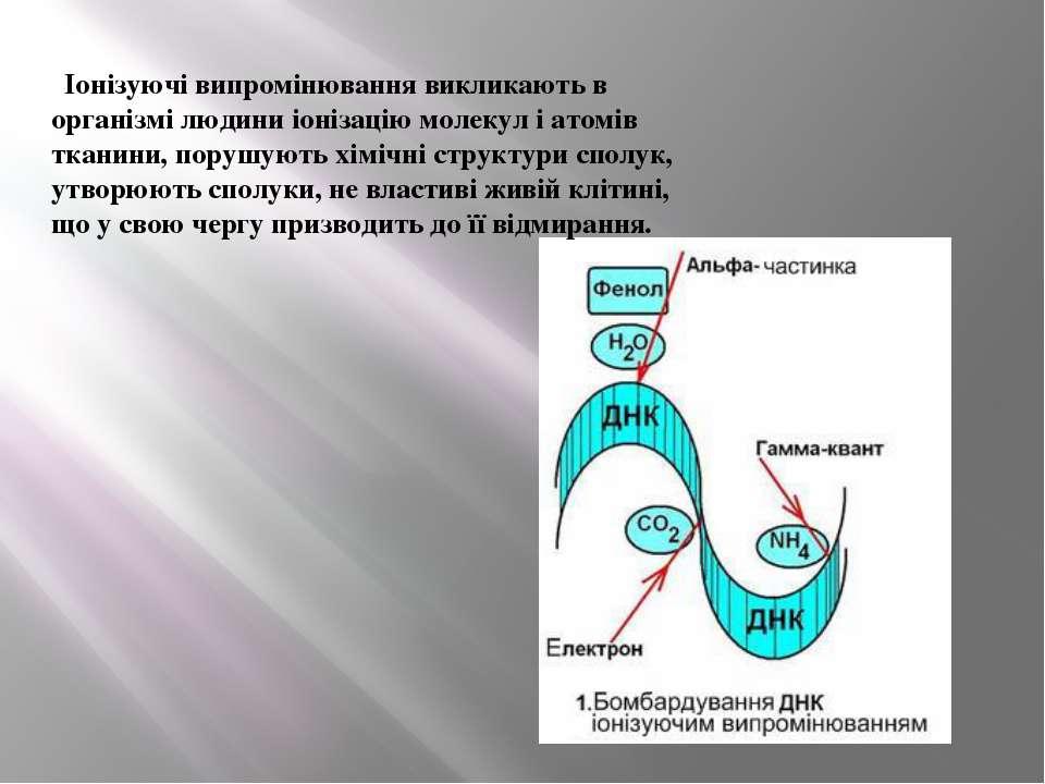 Іонізуючі випромінювання викликають в організмі людини іонізацію молекул і ат...